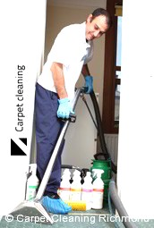 Steam Carpet Cleaning Company Richmond 3121