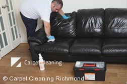 Richmond 3121 Leather Cleaning