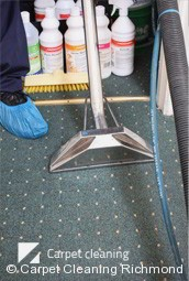 Professional Deep Carpet Cleaning in Richmond