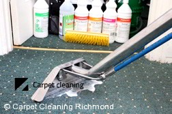 Richmond 3121 Steam Carpet Cleaning Services